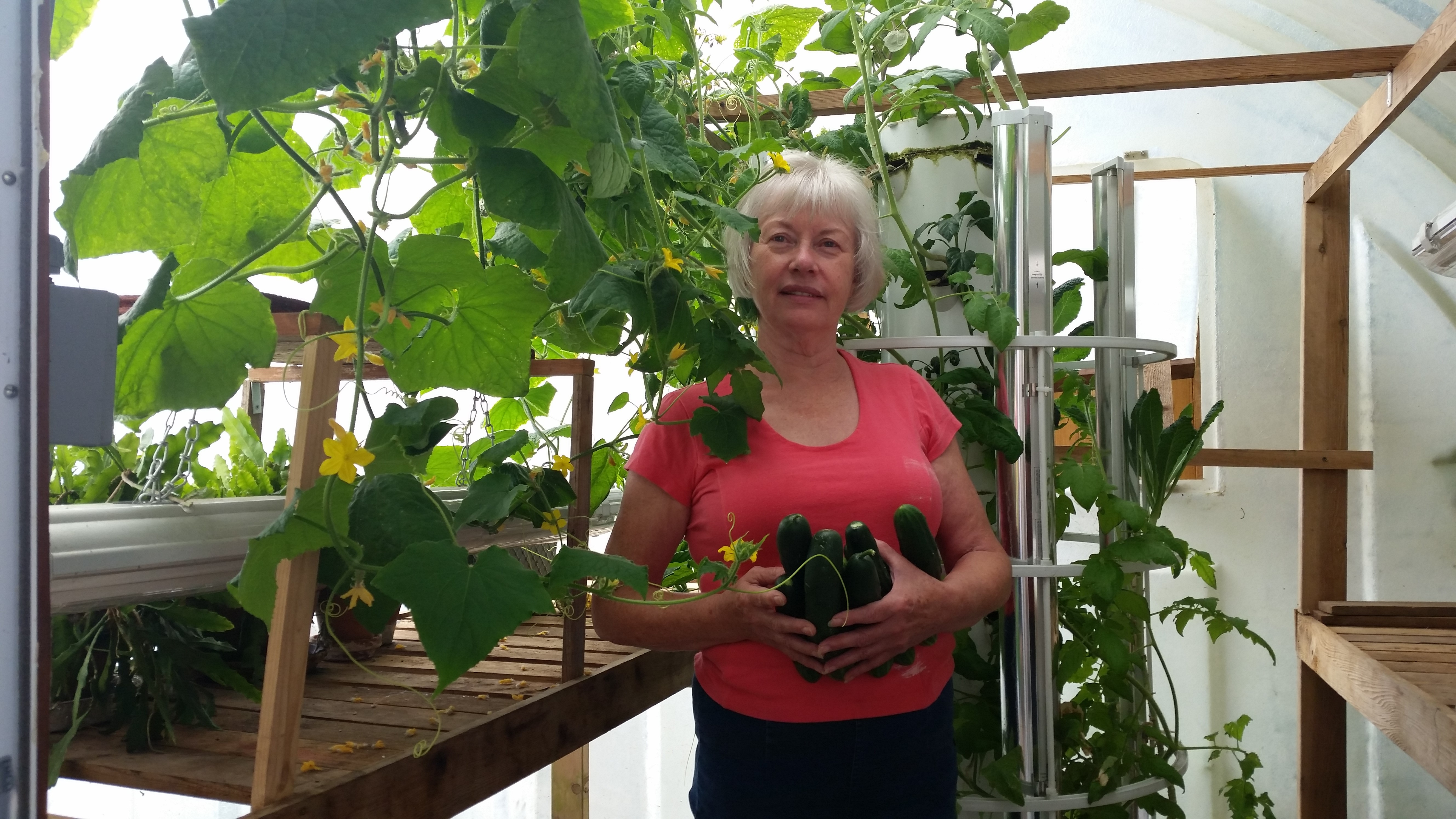 Linda Woolsey featured guest on Aeroponics DIY podcast