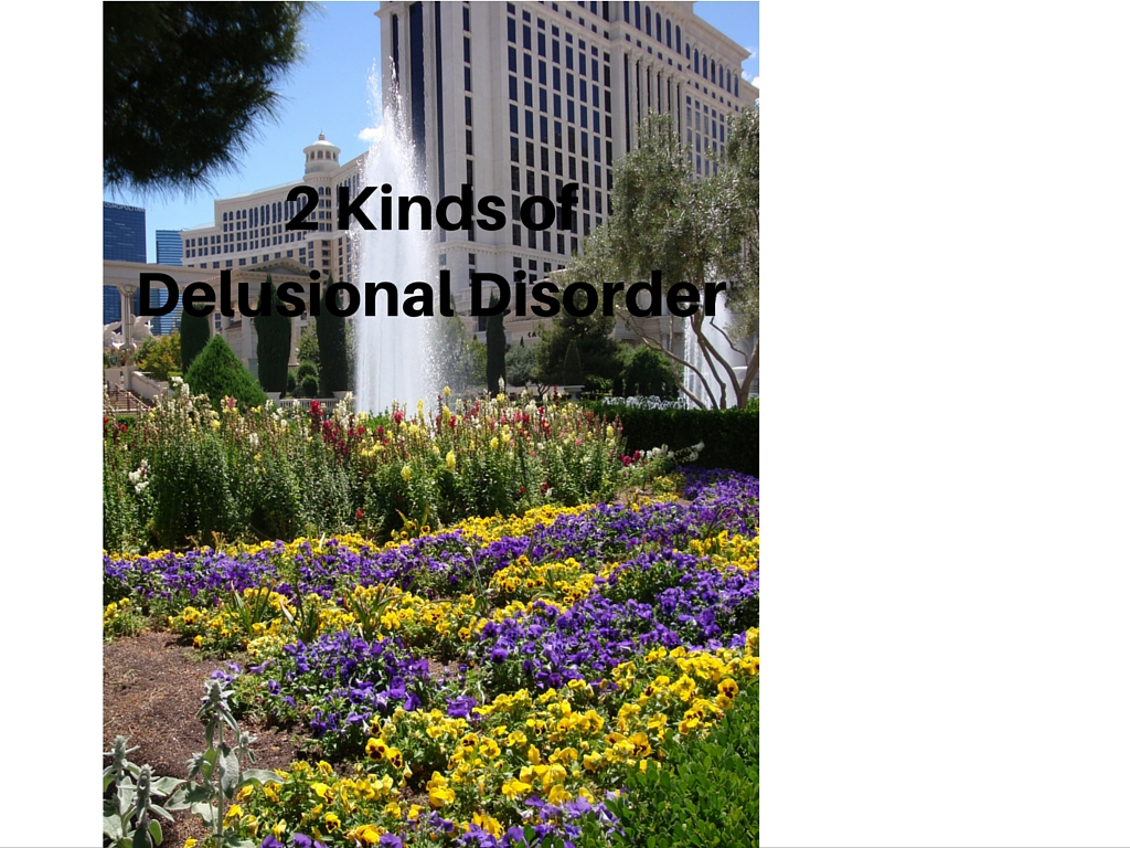 Two Kinds of Delusional Disorder