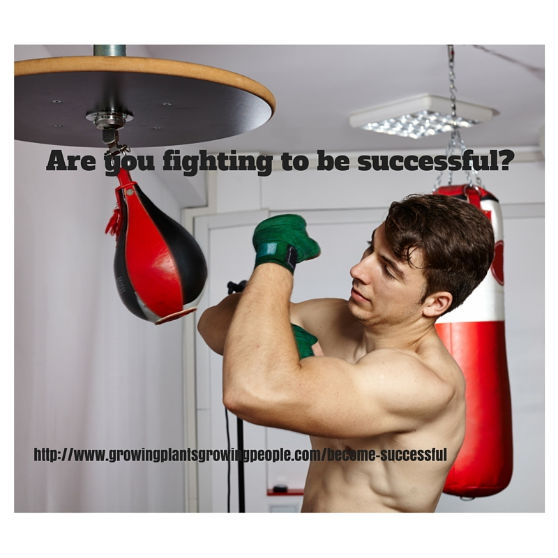 Fighting to Become Successful
