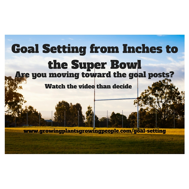 Goal Setting from Inches to the Super Bowl