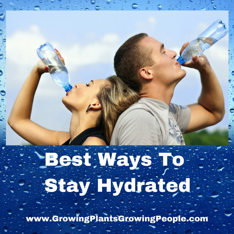 Best Ways To Stay Hydrated