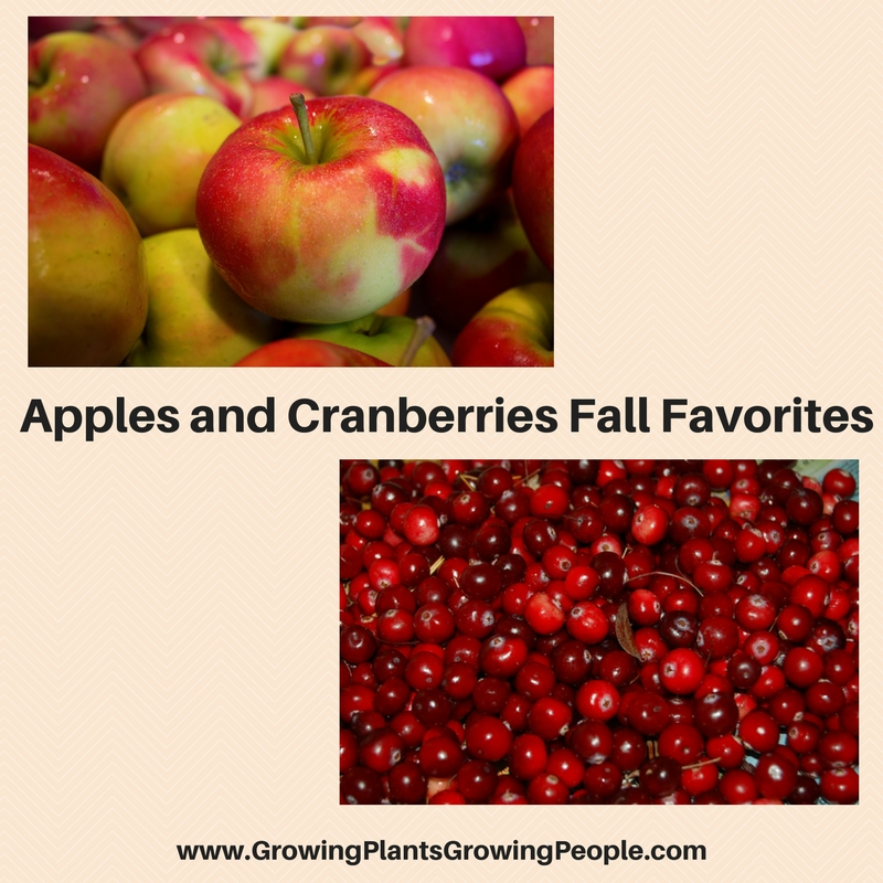 Apples and Cranberries Fall Favorites