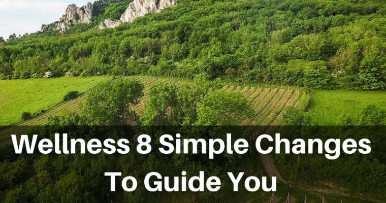 Wellness 8 Simple Changes To Guide You